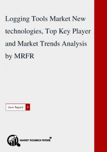 Global Logging Tools Market New Technologies, Top Key Player and Market Trends Analysis by MRFR
