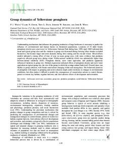 Group dynamics of Yellowstone pronghorn - BioOne