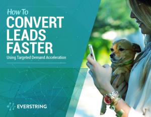 How To CONVERT LEADS FASTER